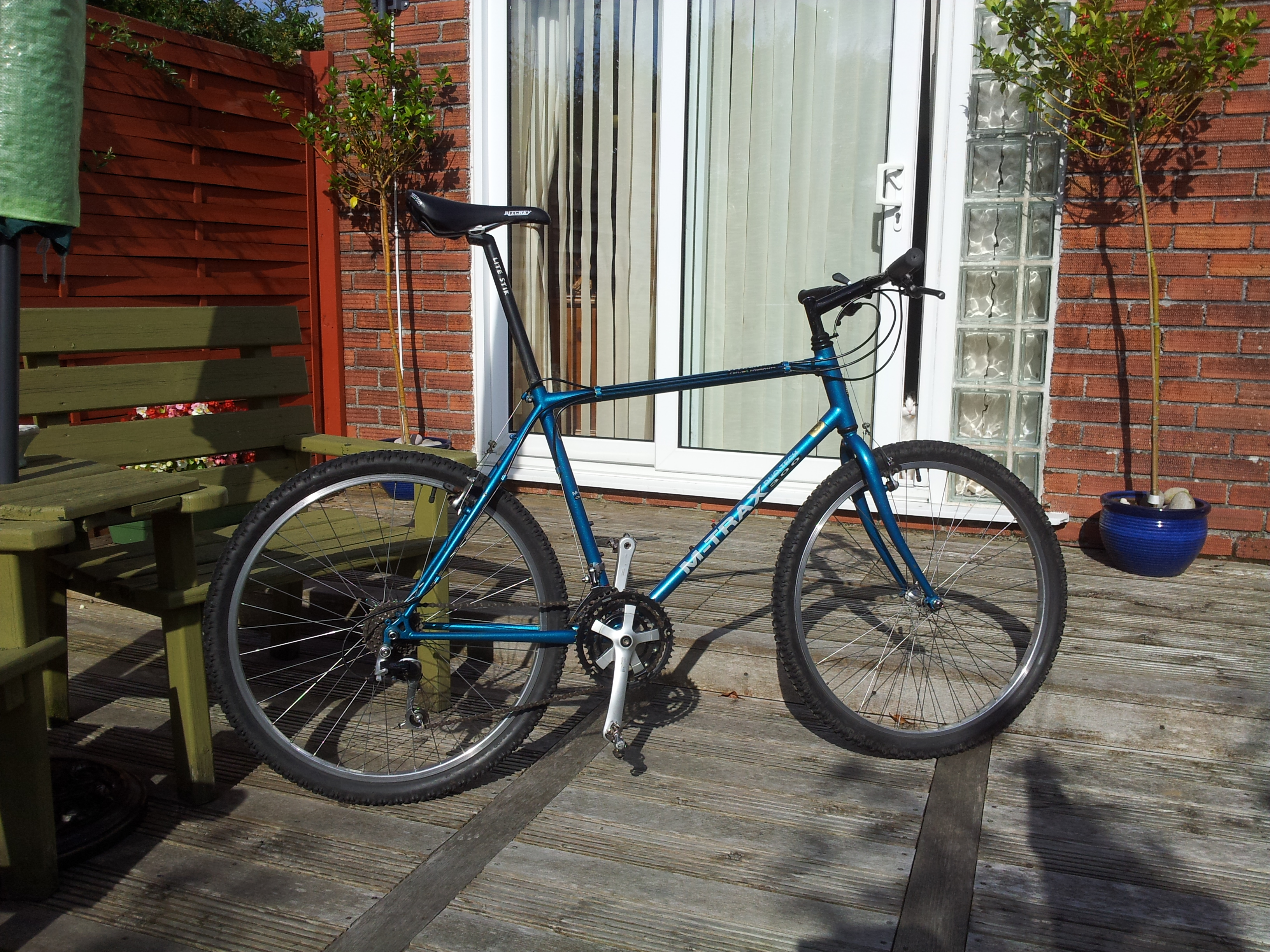 Raleigh M Trax 300