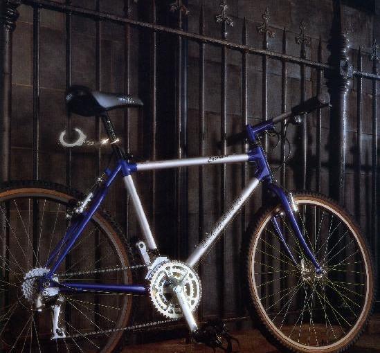 Vintage steel Raleigh Dynatechs